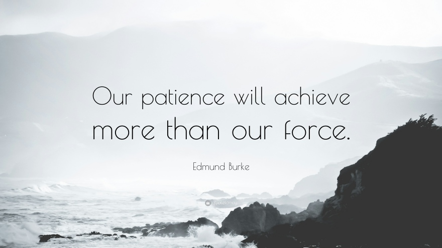 17880-Edmund-Burke-Quote-Our-patience-will-achieve-more-than-our-force.jpg